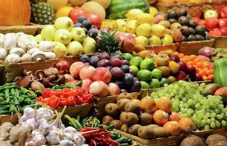 صادرات محصولات کشاورزی 55