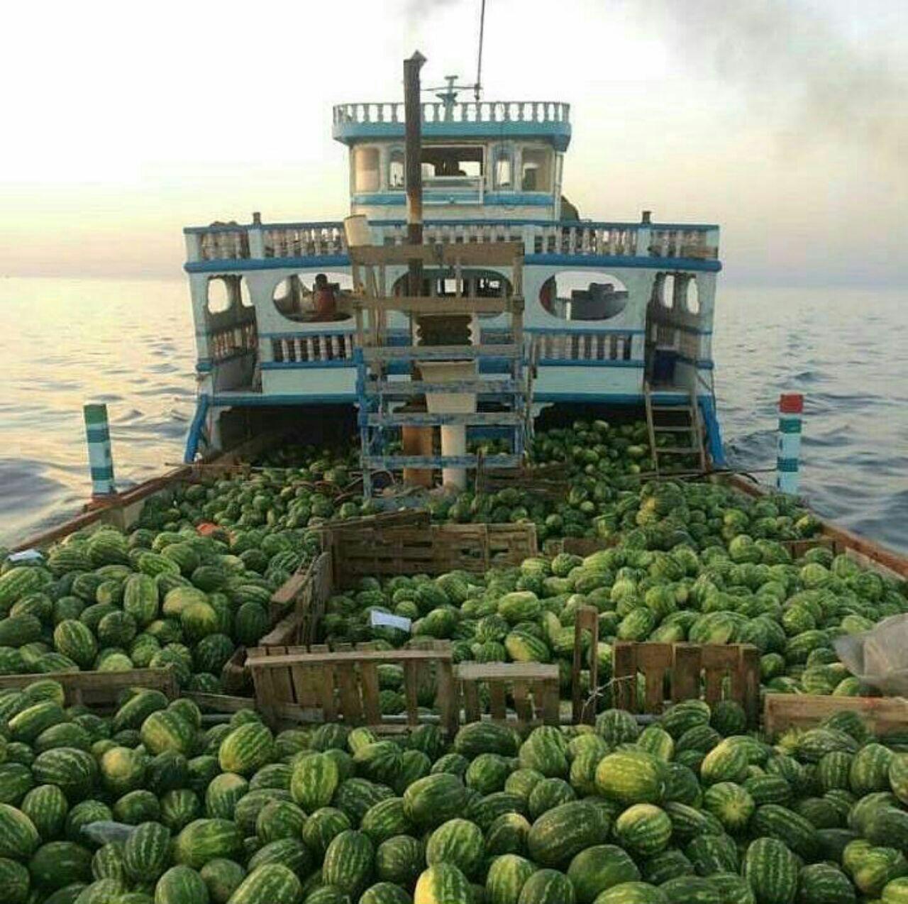 صادرات هندوانه به کویت
